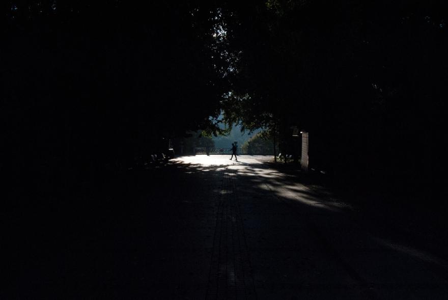 bucwalk-13